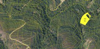 Detalle da parcelación dunha área forestal do distrito forestal Verín-Viana. Imaxe: Prominifun.